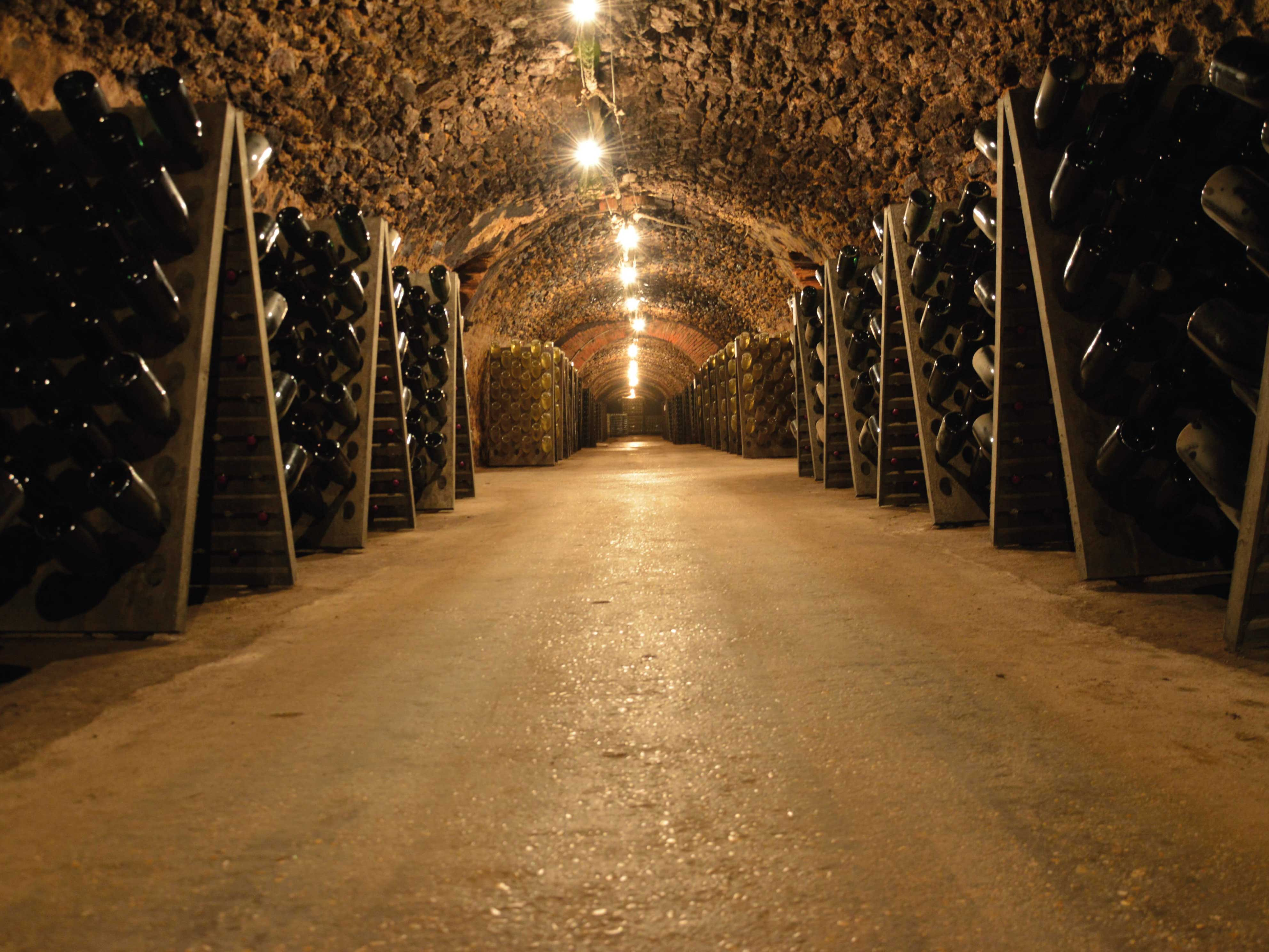 Balades insolites en Champagne My Vintage Tour Company Cave Vollereaux